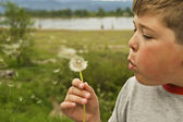 Blowing On A Dandelion — Stock Photo