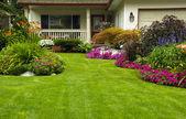 Manicured green Yard — Стоковое фото