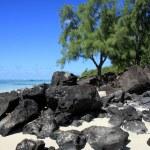 Mauritius landscape — Stock Photo #5491239