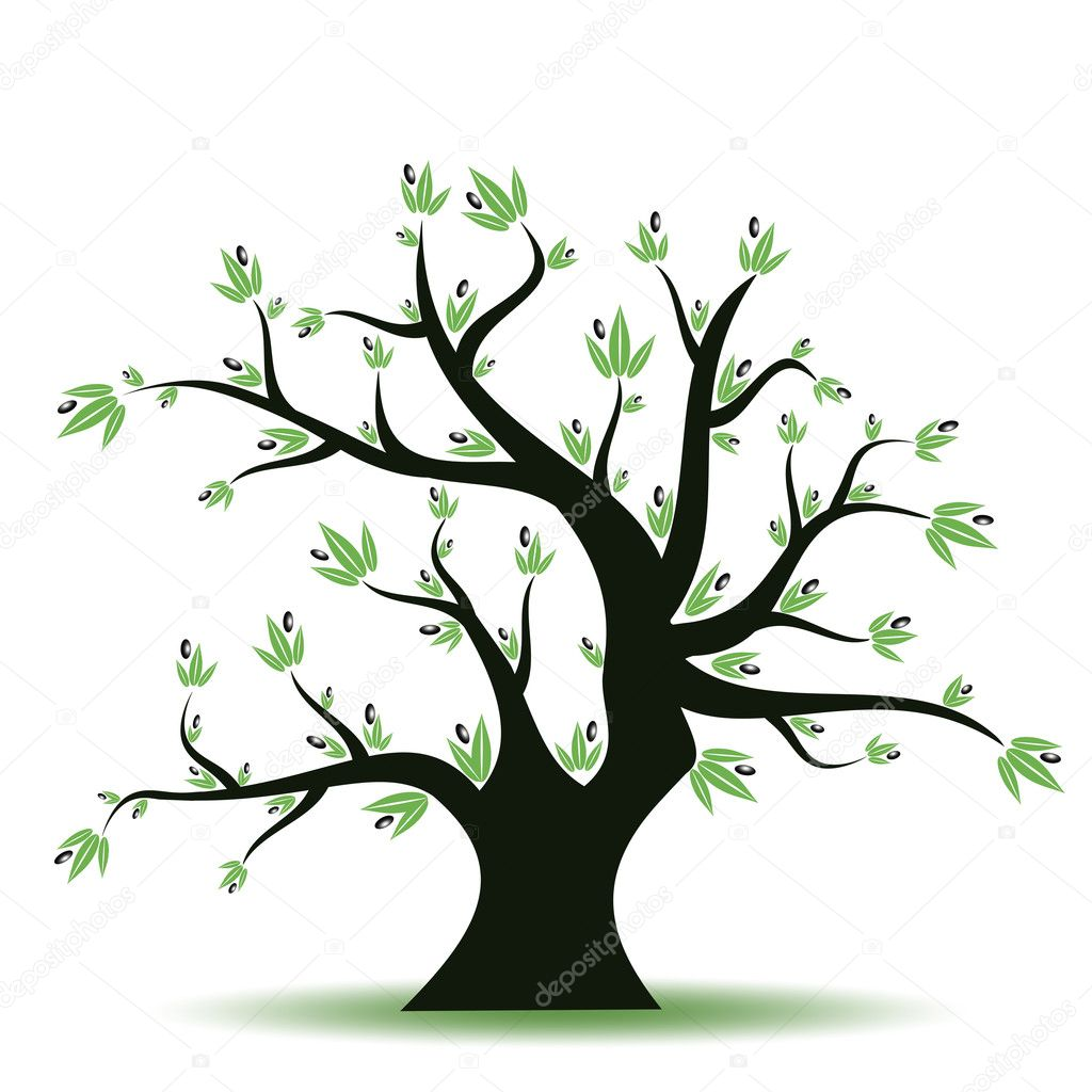 Abstract olive tree on white background — Stock Vector #5876084