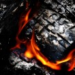 Campfire with Hot Coals - Stock Photo