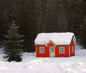 House Buried in Snow — Stock Photo