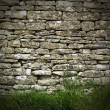 Dry stone wall — Stock Photo #6339614