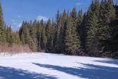 Frozen Alberta River — Stock Photo
