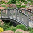 Rockgarden Bridge — Stock Photo #5461363