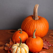 Foto de Stock  : Fall Pumpkins and Decorative Squash