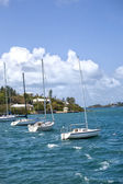 Bermuda Sailboats — Stock Photo