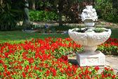 Ornate FlowerPlanter — Stock Photo
