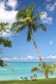 Antigua Oceanfront — Stock Photo