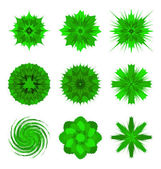 Illustrations of green flower shapes isolated on white — Stock Vector
