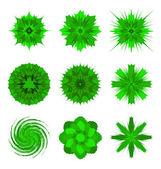 Ilustracje kształtów zielony kwiat na białym tle — Wektor stockowy