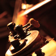 Cello detail — Stock Photo