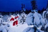 Santa sorprendido en el bosque de invierno — Foto de Stock