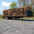 Wood pallets on a truck — Stock Photo