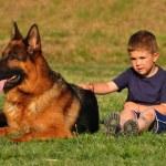 Boy with a German Shepherd — Stock Photo #5865002