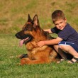 Boy with a German Shepherd — Stock Photo