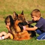 Boy and girl with German shepherd — Stock Photo #5865025