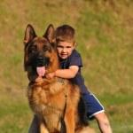 Boy with a German Shepherd — Stock Photo #5865035