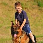 Boy with a German Shepherd — Stock Photo #5865041