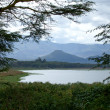View across Lake Naivasha - Stock Photo