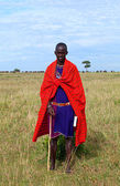 Maasai Guide — Stockfoto