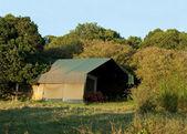 マサイマラ国立保護区で贅沢なサファリのテント — ストック写真