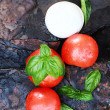 Caprese Salad Ingredients — Stock Photo