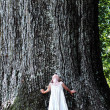 Child Standing Under a Large Tree — ストック写真