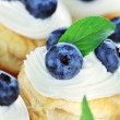 Blueberry Custard Tarts — Stock Photo