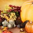 Autumn Still Life — Stock Photo #6731834