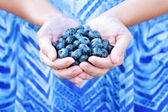 Woman Holding Blueberries — Stock Photo