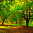 landscape painting - beautiful park on sunny spring day — Stock Photo
