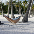 Hammock on Beach — Stock Photo