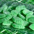 Green mint leaves candies — Stock Photo #5907208