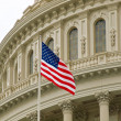 Stock Photo: United States Capitol Building in Washington DC with AmericFlag