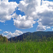 Stock Photo: Grassy Field with Mountains and Partly Cloudy Blue Sky in Background