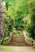 Anne Boleyn garden hever castle england — Stock Photo