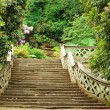 Stone stairs in Hever Castle gardens England — Stock Photo #6249156