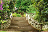 Stone stairs in Hever Castle gardens England — Stock Photo