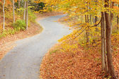 Winding alley in fall — Stock fotografie