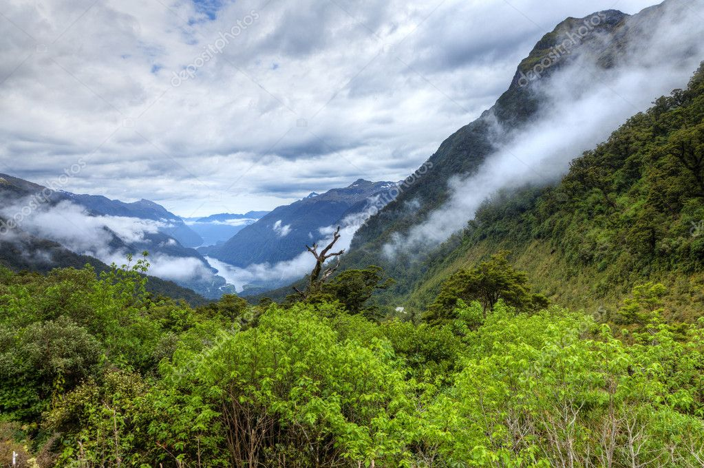 Scenic overlook of Doubtful Sound in New Zealand — Stock Photo #5897012