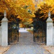 Stock Photo: Park gates