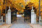Park gates — Stock Photo