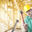 Construction Worker — Stock Photo #6119486