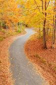 Callejón sinuoso en otoño — Foto de Stock
