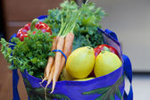 Fresh Produce in a Grocery Bag — Stock Photo