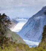 Fox Glacier — Stock Photo