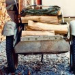 Wheelbarrow With Birch Firewood — Foto de Stock