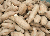 Batat sweet potato — Stock Photo