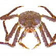 King Crab — Stock Photo